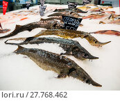 Купить «Fresh Fish on ice for sale in market», фото № 27768462, снято 26 июня 2019 г. (c) PantherMedia / Фотобанк Лори