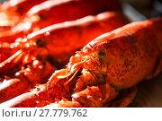 Купить «Cooked red Lobsters», фото № 27779762, снято 23 апреля 2019 г. (c) PantherMedia / Фотобанк Лори