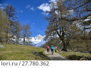 Купить «hiking in pfossental», фото № 27780362, снято 22 апреля 2019 г. (c) PantherMedia / Фотобанк Лори