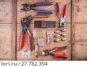 Купить «Rotary leather punch tools», фото № 27782354, снято 16 июля 2018 г. (c) PantherMedia / Фотобанк Лори