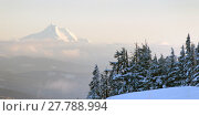 Купить «Mt Jefferson North Cascades Oregon Mountain Range Alpine Forest», фото № 27788994, снято 19 августа 2019 г. (c) PantherMedia / Фотобанк Лори