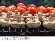 Купить «Champignon white mushrooms and tomatoes on grill», фото № 27789354, снято 20 июля 2019 г. (c) PantherMedia / Фотобанк Лори