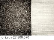 Купить «Horizontal vintage sepia picnic bamboo bedding on grass backgrou», фото № 27800570, снято 19 марта 2019 г. (c) PantherMedia / Фотобанк Лори