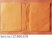 Купить «Horizontal vintage double page orange empty floppy case backgrou», фото № 27800670, снято 19 марта 2019 г. (c) PantherMedia / Фотобанк Лори