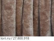 Купить «fleecy fabric texture», фото № 27800918, снято 21 апреля 2018 г. (c) PantherMedia / Фотобанк Лори