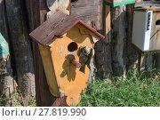 Купить «Birdhouses, houses for birds», фото № 27819990, снято 24 мая 2019 г. (c) PantherMedia / Фотобанк Лори