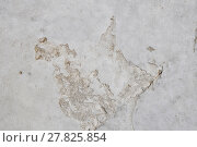 Купить «Defects in grunge concrete wall or floor», фото № 27825854, снято 20 июля 2019 г. (c) PantherMedia / Фотобанк Лори