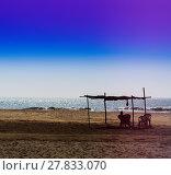Купить «Horizontal vivid man meeting ocean sunset under awning backgroun», фото № 27833070, снято 19 марта 2019 г. (c) PantherMedia / Фотобанк Лори
