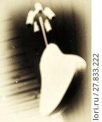 Купить «Vertical vintage blank chinese chime bells vignette blurred back», фото № 27833222, снято 25 февраля 2018 г. (c) PantherMedia / Фотобанк Лори