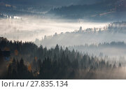 Купить «First sunrise rays of sun in Carpathian mountains.», фото № 27835134, снято 18 октября 2017 г. (c) Юрий Брыкайло / Фотобанк Лори