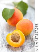 Купить «Fresh ripe apricots .», фото № 27837598, снято 23 марта 2018 г. (c) PantherMedia / Фотобанк Лори