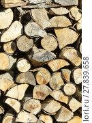 Купить «dry firewood», фото № 27839658, снято 16 июня 2019 г. (c) PantherMedia / Фотобанк Лори