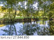 Купить «reflection in the river Tauber in lovely Tauber valley», фото № 27844850, снято 23 марта 2019 г. (c) PantherMedia / Фотобанк Лори