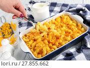 Купить «woman hand is holding a fork with Mac and cheese», фото № 27855662, снято 6 февраля 2018 г. (c) Oksana Zh / Фотобанк Лори