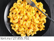 Купить «delicious portion of hot Mac and Cheese», фото № 27855702, снято 6 февраля 2018 г. (c) Oksana Zh / Фотобанк Лори
