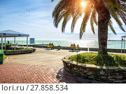 Купить «В лучах холодного солнца  looking at the emerald Black Sea in the rays of cold sun», фото № 27858534, снято 20 января 2018 г. (c) Baturina Yuliya / Фотобанк Лори