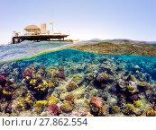 Купить «Underwater and surface split view in the tropics sea», фото № 27862554, снято 26 мая 2019 г. (c) PantherMedia / Фотобанк Лори