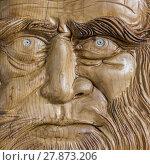 Купить «Face of Leonardo da Vinci», фото № 27873206, снято 19 июня 2019 г. (c) PantherMedia / Фотобанк Лори