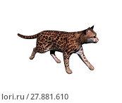 Купить «ocelot schleich cat isolated», фото № 27881610, снято 19 июля 2019 г. (c) PantherMedia / Фотобанк Лори