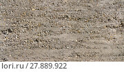 Купить «rough concrete wall with partially exposed pebbles», фото № 27889922, снято 23 октября 2018 г. (c) PantherMedia / Фотобанк Лори