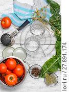 Купить «Marinating harvest tomatoes», фото № 27891174, снято 10 июля 2020 г. (c) PantherMedia / Фотобанк Лори
