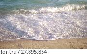 Купить «Shore and sea waves rolling in», видеоролик № 27895854, снято 26 марта 2019 г. (c) Данил Руденко / Фотобанк Лори