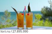 Купить «Refreshing fruit drinks with ice cubes falling into glasses», видеоролик № 27895990, снято 22 мая 2019 г. (c) Данил Руденко / Фотобанк Лори