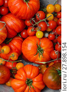 Купить «Tomatoes in colander», фото № 27898154, снято 17 января 2019 г. (c) PantherMedia / Фотобанк Лори