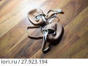 Купить «Gymnast's toe shoes on wooden floor», фото № 27923194, снято 24 февраля 2019 г. (c) PantherMedia / Фотобанк Лори
