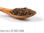 Купить «Decorticated cardamom seeds in a wooden spoon», фото № 27927254, снято 20 ноября 2019 г. (c) PantherMedia / Фотобанк Лори