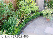 Купить «Edge of circular patio from above with box hedge and bushes», фото № 27929406, снято 20 марта 2019 г. (c) PantherMedia / Фотобанк Лори