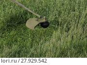 Купить «Mowing green grass using a fishing line trimmer», фото № 27929542, снято 20 мая 2018 г. (c) PantherMedia / Фотобанк Лори