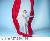 Купить «Graceful gymnast performing aerial exercise», фото № 27930494, снято 24 февраля 2019 г. (c) PantherMedia / Фотобанк Лори