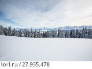 Купить «Splendid winter alpine scenery with high mountains and trees covered with snow», фото № 27935478, снято 22 апреля 2019 г. (c) PantherMedia / Фотобанк Лори