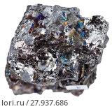 Купить «specimen of black coal (anthracite) isolated», фото № 27937686, снято 18 января 2019 г. (c) PantherMedia / Фотобанк Лори