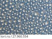 Купить «Shiny Water Droplets», фото № 27960554, снято 21 мая 2019 г. (c) PantherMedia / Фотобанк Лори