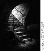 Купить «Old cellar staircase in low light», фото № 27971274, снято 20 июня 2018 г. (c) PantherMedia / Фотобанк Лори