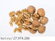 walnut and a cracked walnut isolated. Стоковое фото, фотограф Wieslaw Jarek / PantherMedia / Фотобанк Лори