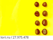 Купить «Chestnuts pattern on yellow background top view chestnut», фото № 27975478, снято 20 марта 2019 г. (c) PantherMedia / Фотобанк Лори