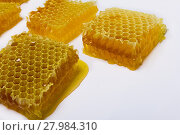 Купить «honeycomb honey on a white background», фото № 27984310, снято 22 мая 2018 г. (c) PantherMedia / Фотобанк Лори