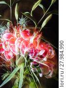 Купить «multiply exposed lilies», фото № 27984990, снято 23 октября 2018 г. (c) PantherMedia / Фотобанк Лори