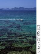 Купить «tuscan archipelago island elba», фото № 27995202, снято 16 июня 2019 г. (c) PantherMedia / Фотобанк Лори