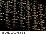 Купить «Artifical neural net. Neuron network with connection links. 3d illustration», фото № 27998554, снято 15 октября 2018 г. (c) PantherMedia / Фотобанк Лори