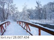 Купить «Зимний пейзаж. Река Яуза в Москве в районе Свиблово. Юрловский народный парк», фото № 28007434, снято 6 февраля 2018 г. (c) Natalya Sidorova / Фотобанк Лори