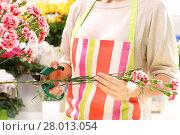 Купить «trim the stems of flowers», фото № 28013054, снято 25 февраля 2018 г. (c) PantherMedia / Фотобанк Лори