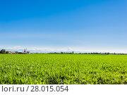 Купить «Agricultural landscape», фото № 28015054, снято 16 июля 2019 г. (c) PantherMedia / Фотобанк Лори