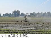 Купить «Irrigation system in the field of melons. Watering the fields. Sprinkler», фото № 28018962, снято 23 января 2019 г. (c) PantherMedia / Фотобанк Лори