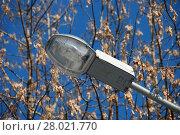 Купить «Уличный фонарь крупным планом. Коломенский парк. Город Москва», эксклюзивное фото № 28021770, снято 1 марта 2011 г. (c) lana1501 / Фотобанк Лори