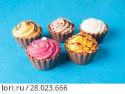 Купить «Colorful cupcakes.  Chocolate Cupcake», фото № 28023666, снято 17 октября 2018 г. (c) PantherMedia / Фотобанк Лори