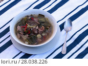 Купить «Duck breast soup with organic veggies», фото № 28038226, снято 18 июня 2019 г. (c) PantherMedia / Фотобанк Лори